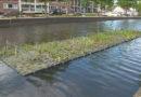 Eindhoven, la smart city che torna alla natura per migliorare la qualità della vita