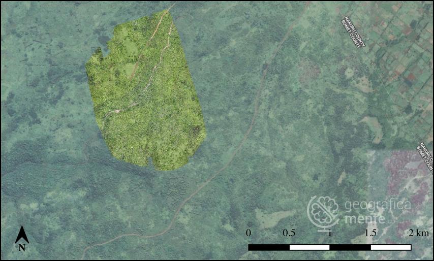 Ortofoto (parziale) del settore analizzato – Elaborazione dell'autore (confronto con sfondo Google Earth)