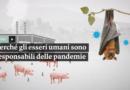 Perché gli esseri umani sono responsabili delle pandemie